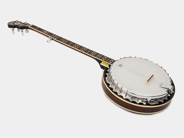 Image of a 5-string banjo