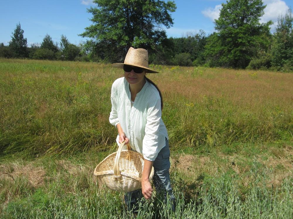 Amber cueillant des plantes sauvages