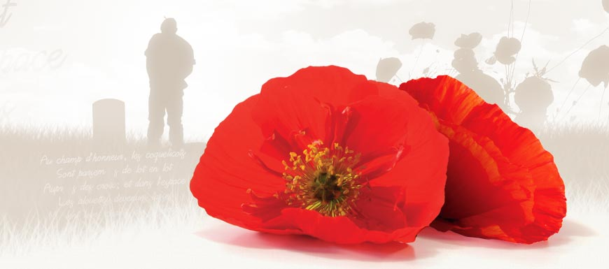 Remembrance Day Assembly: A gathering of community through the art of stories